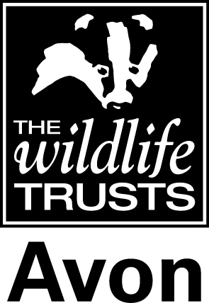 Avon Wildlife Trust_Logo_Avon-below.jpg